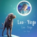 Virgo Woman Leo Man